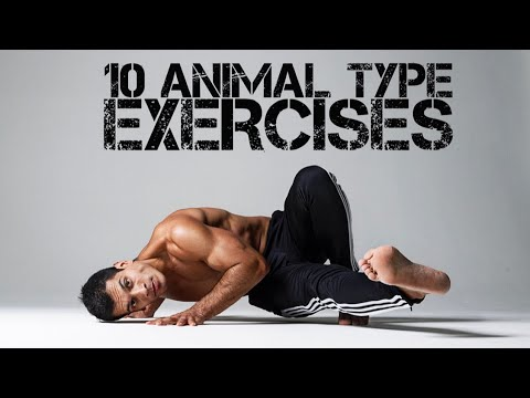 10 Animal Movement Exercises You can Practice #movement #mobility #calisthenics
