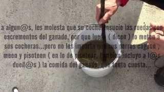 PERRUNÁR PLANTAS ( repelente para animales rumiantes ) PERRUNÁR PLANTS (repellent for animals)