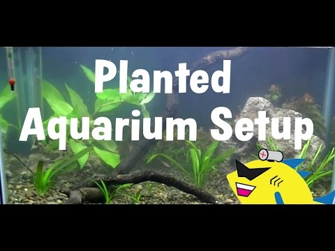 how to set up a drogue freshwater