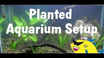 AQUARIUM SETUP / AQUASCAPING / TUTORIALS - YouTube