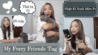 | Chit Chat With Thỏ | Nhật Kí Nuôi Mèo Phần 1 - My Furry Friends Tag | Nói Xấu XyLip Couple Cats
