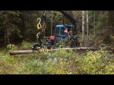 MTZ harvester in forest