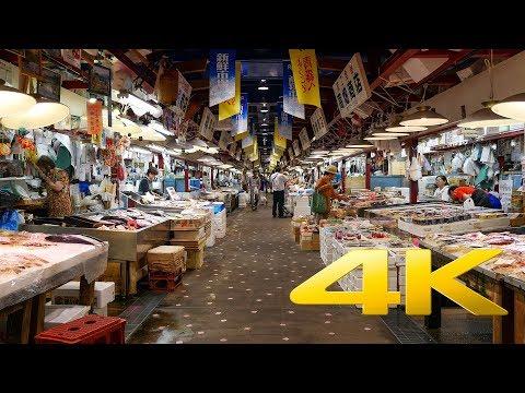 Auga Fish Market - Aomori - アウガ新鮮市場 - 4K Ultra HD