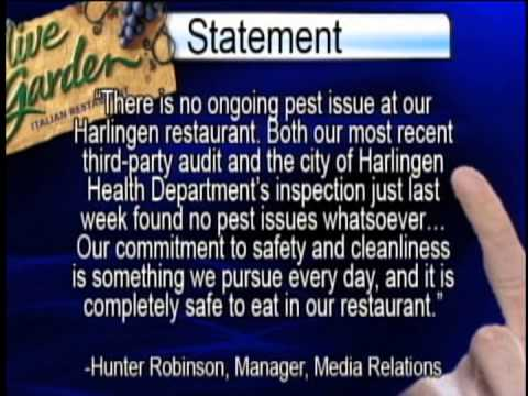 Roaches At Olive Garden Youtube