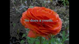 What Is A Youth - Glen Weston (HD) with lyrics