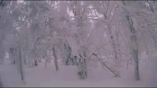 аша 2017 царство снежной королевы