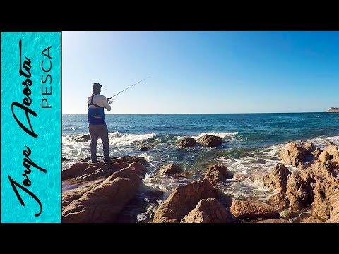 Pesca de Orilla en PUERTO LIBERTAD, Sonora