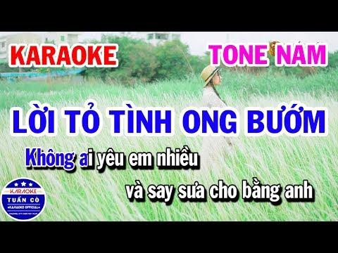 Karaoke Lời Tỏ Tình Ong Bướm Tone Nam Gm   Karaoke Tuấn Cò