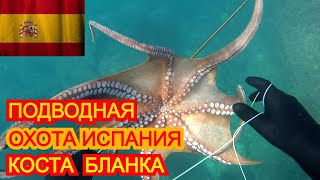 Подводная охота Испания Коста Бланка