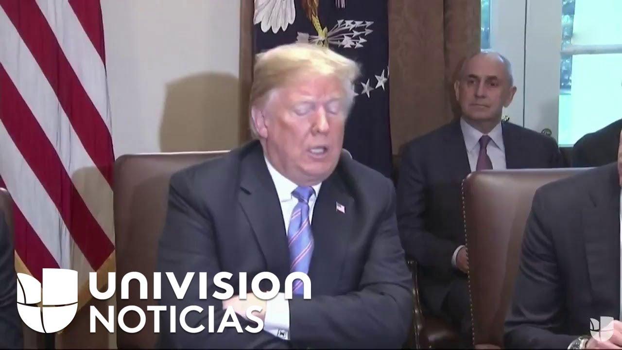 El presidente Donald Trump se reunió con su gabinete esta mañana en la Casa Blanca.