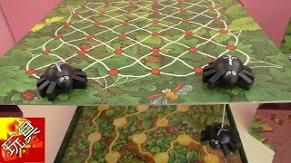 德国 儿童桌游Spinderella 天降神蛛 夹玩偶 多人 玩具组 套装 开箱 组装 展示