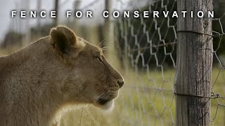 Fence for Conservation | Conservation Documentary Film | South Africa