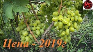 Виноград   цена на рынке в 2019 году