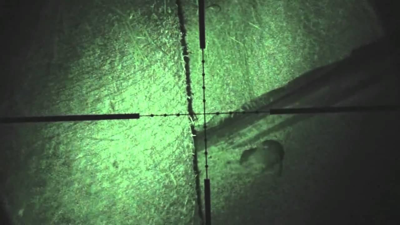 Rat shooting using night vision .177 HW100 air rifle by ...