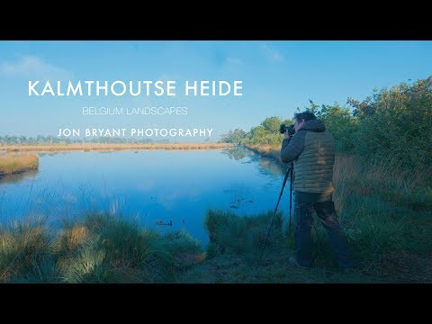 Landscape & Nature Photography in Kalmthoutse Heide