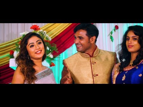 Serial Actor Renjith Dhanya Wedding Highlights