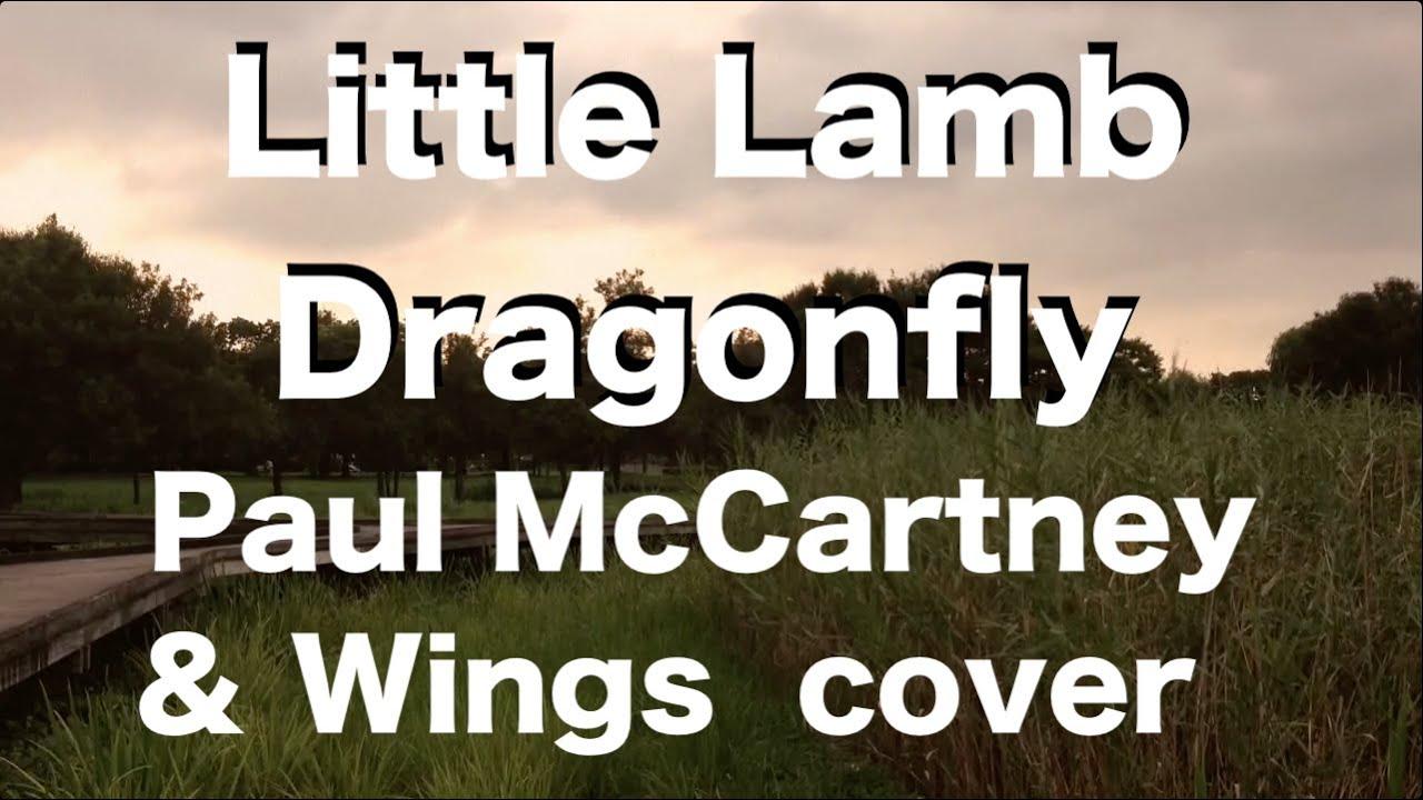 Paul McCartney & Wings - Little Lamb Dragonfly - COVER