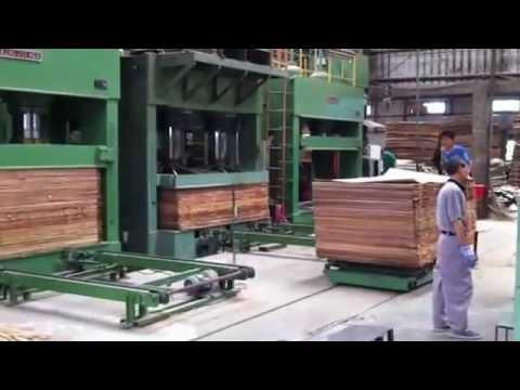 Dây chuyền sản xuất ván ép chuyên nghiệp công nghệ cao (+84988869579)