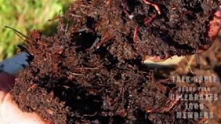 मिट्टी के प्रकार और पोषक तत्वों की गतिशीलता | भाषा - हिन्दी | Lets Grow Apple