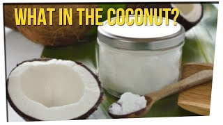 Guy Shares Disgusting Story About a Coconut ft. DavidSoComedy