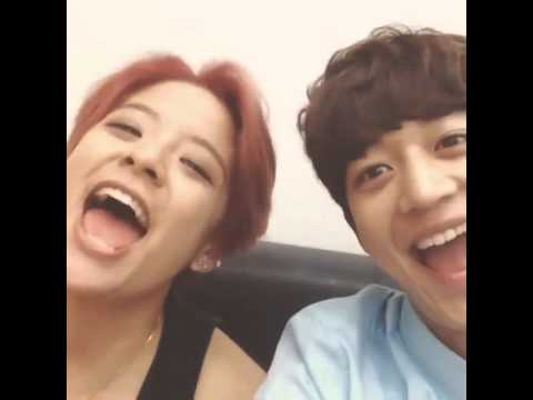 THE LLAMA SONG Choi Minho & Amber Liu