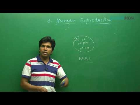 Human Reproduction by M. Asad Qureshi (MAQ) Sir (ETOOSINDIA.COM) thumbnail