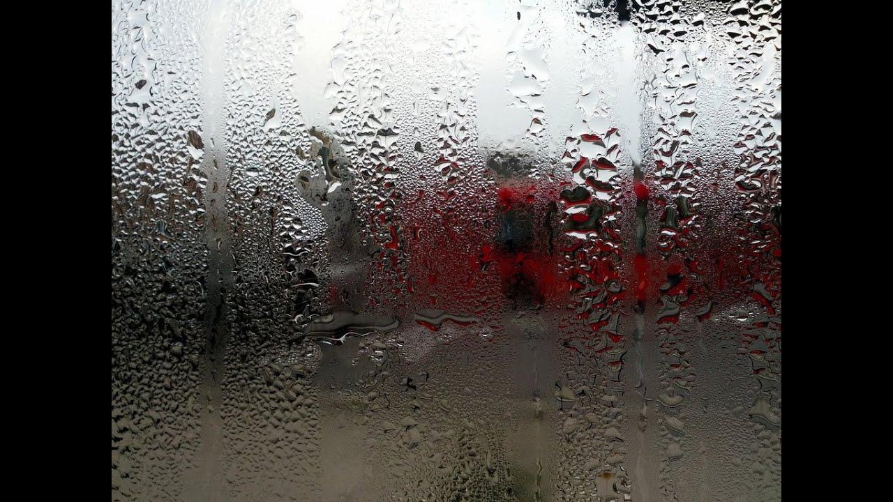 Qu es la condensaci n cambios de estado y c mo se - Como evitar la condensacion ...