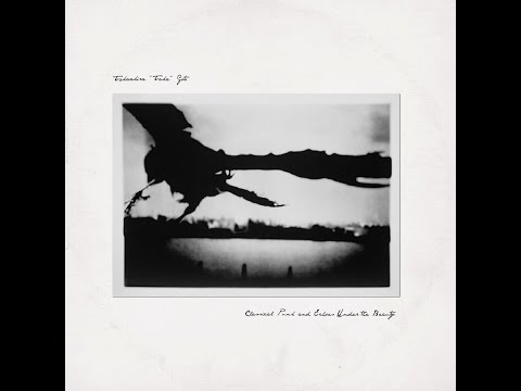 Takaakira 'Taka' Goto - Classical Punk and Echoes Under the Beauty (Pelagic Records) [Full Album]
