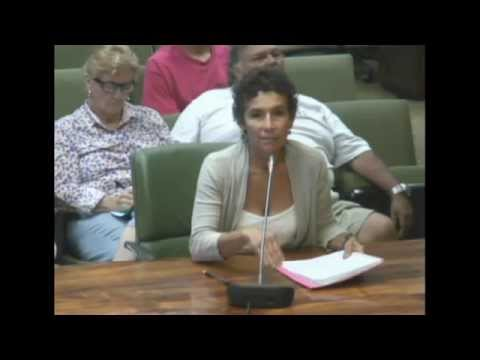 GMO geothermal testimony part 1 before lunch