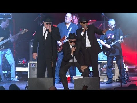 "THE BLUES BROTHERS ""Everybody needs somebody"" Live @ wROCK for Freedom 2014 / Poland"