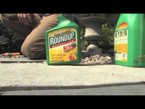 How to Dispose of Roundup Weed Killer | Videos | Roundup Weedkiller