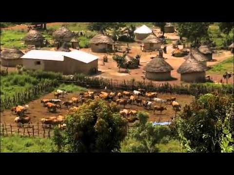 Livestock Under Threat: Managing the Future of Native West African Ruminant Livestock