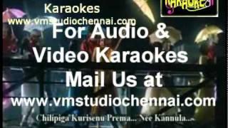 Telugu Karaoke Mila Mila Merise Taara - Nirnayam (VM).mpg