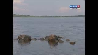 Администрация Петрозаводска проверяет безопасность лагерей