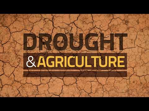 Drought and Agriculture - Predict, Plan and Prepare: Stop Drought Becoming Famine