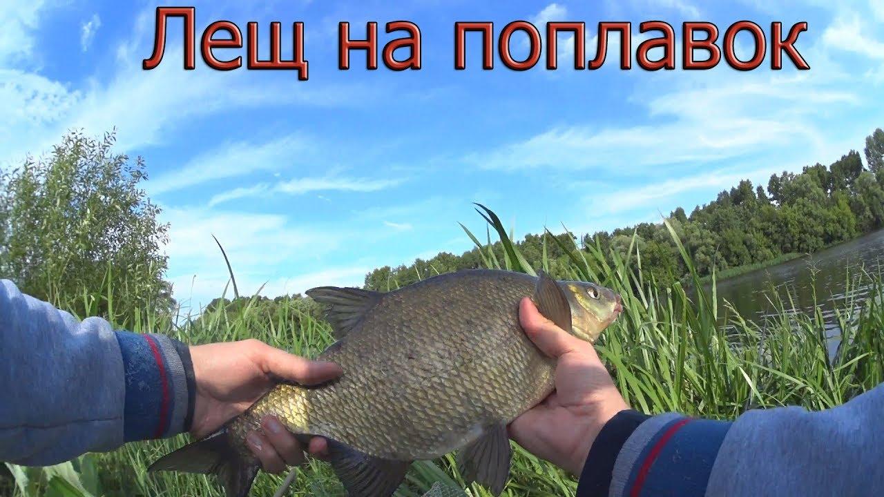 Ловля крупной рыбы на поплавочную удочку видео