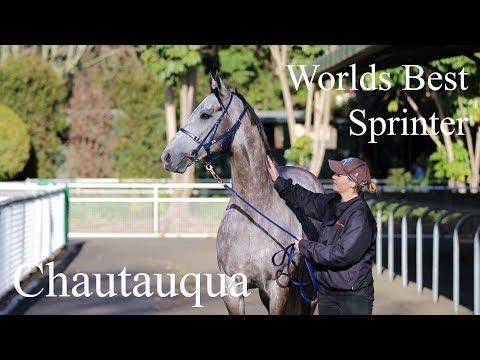 ATC TV: Chautauqua, The Worlds Best Sprinter