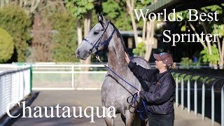 ATC TV: Chautauqua, The Worlds Best Sprinter