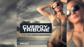 Cueboy & Tribune - Shelter from the storm (Radio Edit) // DANCECLUSIVE //