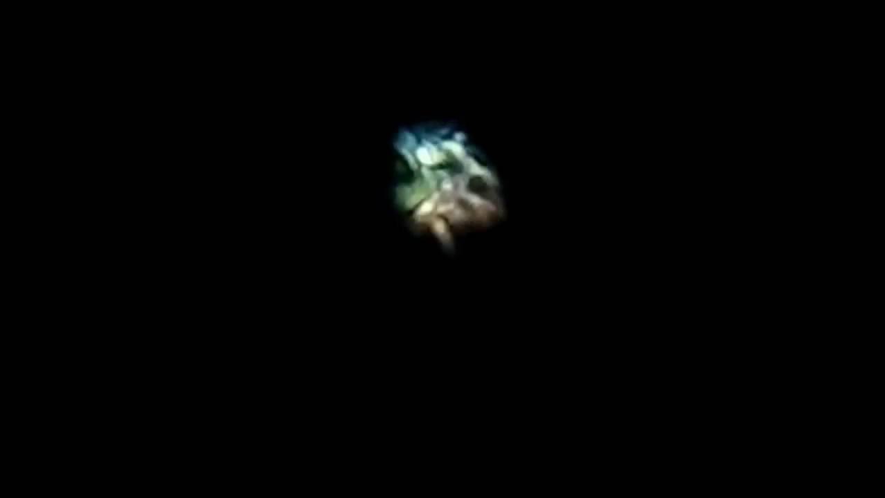 Звезда Сириус снятая фотоаппаратом Nikon P 900 - YouTube