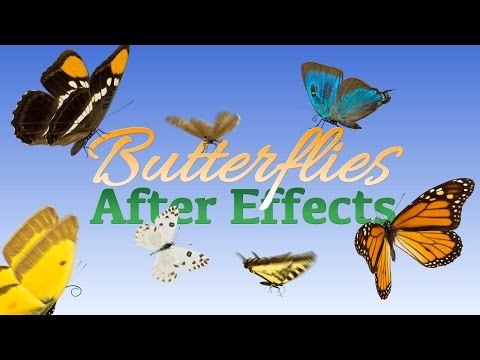 Butterflies for After Effects