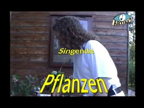 Singende Pflanzen (Damanhur) & Obertongesang (Tino Bogner) DOKU Pflanzenkommunikation, Pflanzenmusik