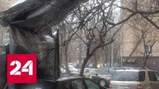 Синоптики пугают резким понижением температуры и снегом - Россия 24