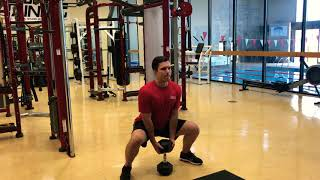 DUMBBELL SUMO SQUAT