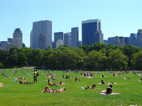 Viaggio a New York 2016.  Da Manhattan al Central Park