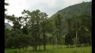 Provincia de Cutervo - Cajamarca