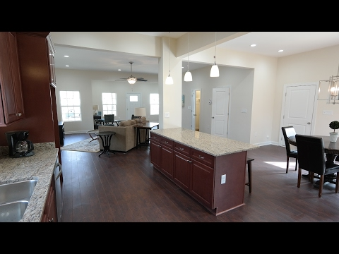 Hollywood Homes Norfolk Virginia|1163 Reel St PDiddy Inc Houses|New Homes for Sale Hampton Roads