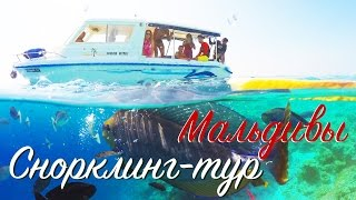 Alex WelcomeTravel - AMAZING MALDIVES | МАЛЬДИВЫ