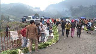 Tin Tức 24h: Nhộn nhịp chợ Tết vùng biên Việt - Lào