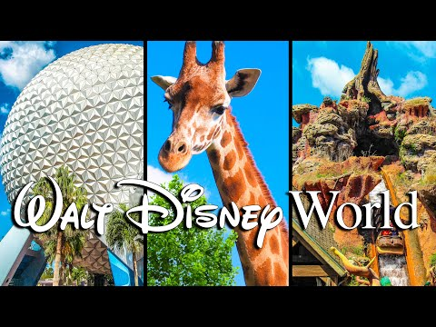 Top 10 Longest Disney World Rides